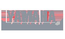 Yamaha Delta team
